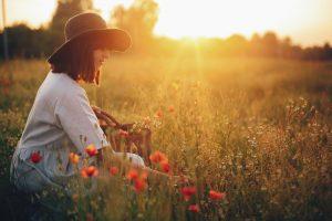 夕日をバックに花を摘む女性
